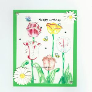 Online Birthday Collection no 66