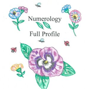 numerology full profile