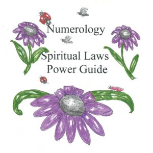 numerology laws